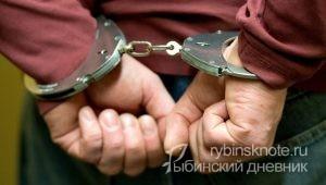 В Рыбинске задержали дачного вора