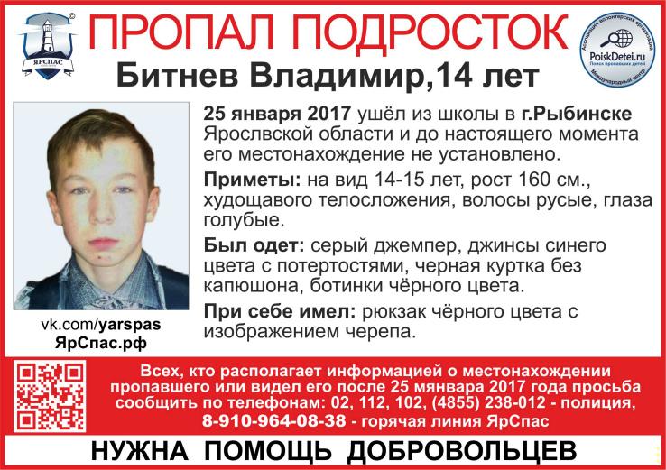 Владимир Битнев